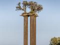 Oliven-Säulen von Ran Morin