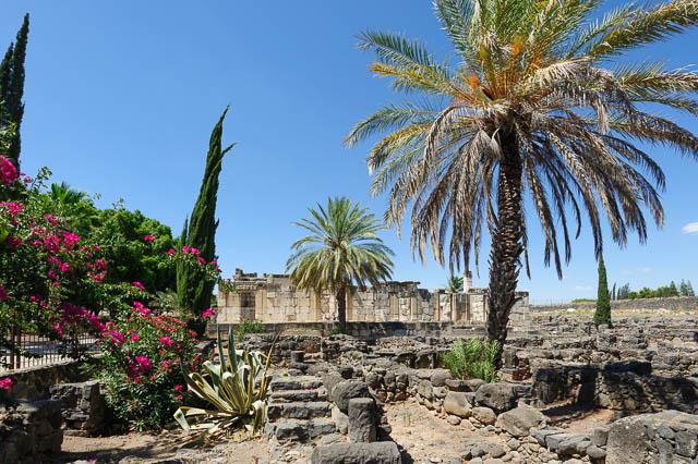 Capernaum-009-20120704