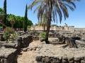 Capernaum-010-20120704